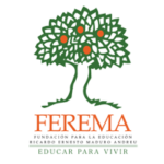 FEREMA_Supporting-200