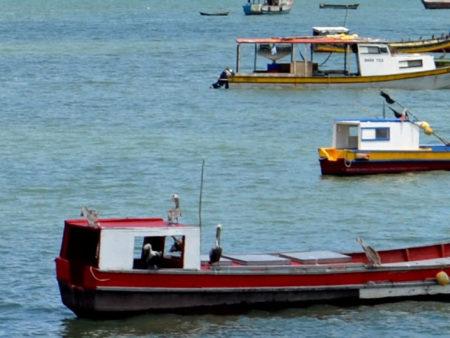 2017-CADF-image_-boats